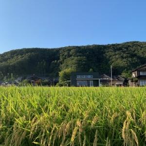 MEI-SUN COFFEE(メイサンコーヒー)2